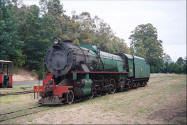 Photo of steam engine in Pemberton Australia.